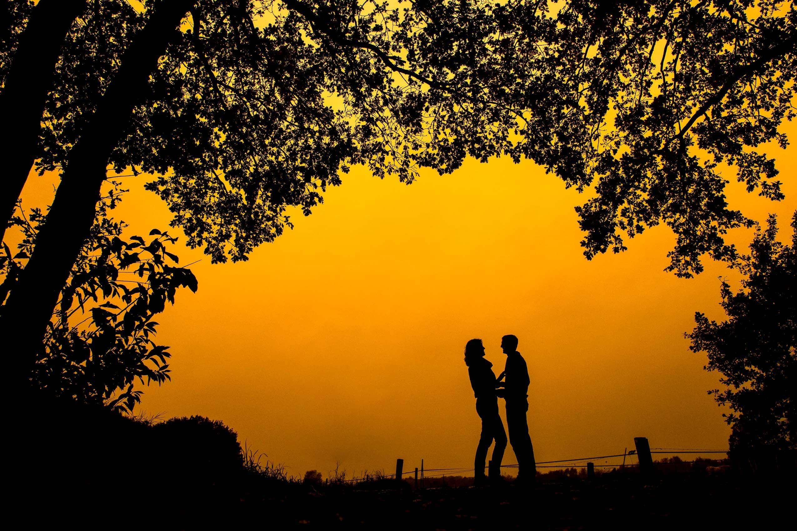 btogether trouwfotograaf apeldoorn 1